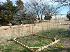 Doing my best for Him: The chicken coop