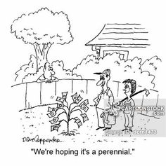 Image result for gardening humour