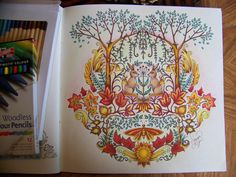 "Adult Coloring Book ""Enchanted Forest"" Johanna Basford. Two bunny rabbits, trees,leaves and a butterfly. Colored by Donna Leger"