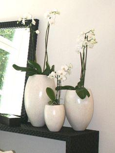 Amaris Elements amaris elements vase eierschalen braun kaufen im borono shop