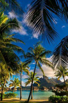 Dec 22 2019 - Four Seasons Resort Bora Bora Motu Tehotu Bora Bora Society Islands French Polynesia. Vacation Places, Vacation Destinations, Dream Vacations, Vacation Spots, Holiday Destinations, Beautiful Places To Travel, Beautiful Beaches, Bora Bora French Polynesia, Society Islands