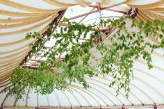 Roof installation Roof Installation, Housewarming Party, House Warming, Wreaths, Plants, Home Decor, Garlands, Homemade Home Decor, Decoration Home