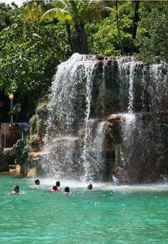The Venetian Pool in Coral Gables, Florida 2701 de Soto Boulevard Coral Gables, FL 33134 (305)460-5306 Also near Miami.