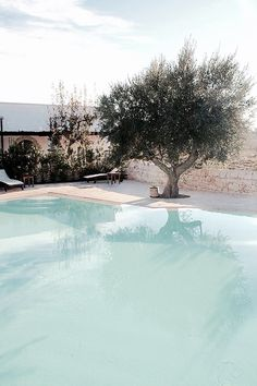 White rendered pool. Pinned to Pool Design by BASK Pool Design.