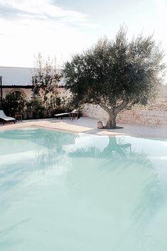 Pool Stone & Living - Immobilier de prestige - Résidentiel & Investissement // Stone & Living - Prestige estate agency - Residential & Investment www.stoneandliving.com