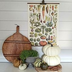 Good evening friends! I recently discovered @deerandthyme Julie's awesome account and wanted to share for #FarmhouseFollowFriday! Her Etsy shop has so many fun items and I love her vintage fresh styling. I get so many ideas from her feed! Take a look!