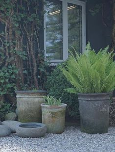 Thrilling About Container Gardening Ideas. Amazing All About Container Gardening Ideas. Gravel Patio, Gravel Garden, Garden Pots, Garden Cottage, Garden Landscaping, Pea Gravel, Potted Garden, Country Landscaping, Backyard Patio