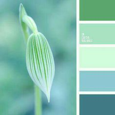 Green Hues Blue And Shades Colour Pallete Winter Palette Cool Color