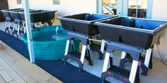 Aquaponics 101 Part Three: System Design, Continued | AquaponicsUSA's Blog