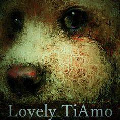 #トイプードル #イラスト 愛犬ティアモを文字を入れて編集加工しました、ドアップの愛犬ティアモの目線が人間的に見えます。  Ludovico Einaudi - ISLANDS (FULL ALBUM) http://youtu.be/uqczMg8bGcY