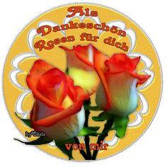 Als Dankeschön Rosen für dich