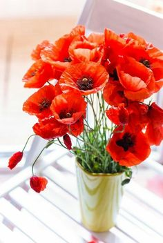 Love the bright red colour of poppies Poppy Bouquet, Red Poppies, My Flower, Mother Nature, Floral Arrangements, Beautiful Flowers, Cactus, Wedding Flowers, Anemones