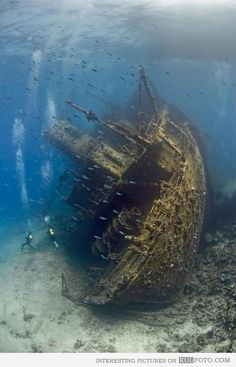 Sunken ship in the Red Sea