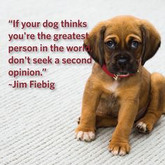 """""""If your dog thinks you're the greatest person in the world, don't seek a second opinion."""" ~Jim Fiebig"""