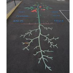 Educational art on the pavement at Cleveland Elementary School in Oakland, CA.
