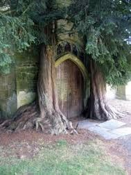 Image result for Wooden Door of St Edwards church
