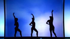 Light and shade. Silhouettes of a gymnastic girl.  #acrobat #acrobatic #action #art #artist #artistic #artwork #athlete #athletic #balance #body #broadway #choreography #circus #dance #dancer #element #figure #flexible #girl #grace #gymnast #illusion #motion #musical #performance #performer #physical #school #seductive #sensual #shadow #shape #show #sign #silhouette #space #sport #stand #strong #template #theater #theatrical #twine #woman #young #female