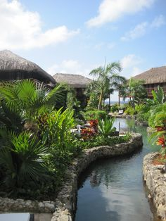 Kontiki beach resort, Curacao