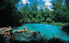 Itchetucknee Springs, FL...absolutely love this place. The water is so clear and cool. Perfect for snorkeling!
