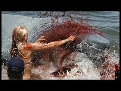 Great White shark attack on kayakers in Massachusetts and their 911 call from the water - YouTube