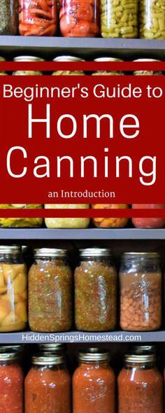 Huge Pinterest Image of Canned Vegetables on a shelf