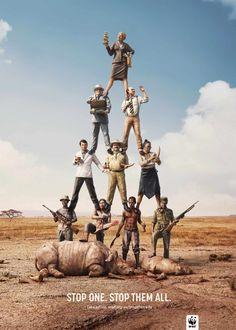WWF Rhino Poaching Poster