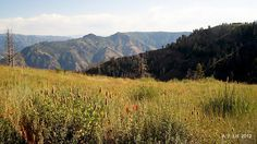 Photo of the Day by A. F. Litt: January 7, 2012, Hells Canyon