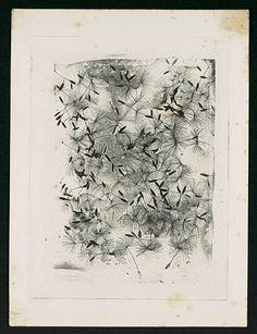 William Henry Fox Talbot: Dandelion Seeds. Photogravure, 1858 or later.