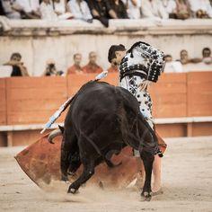 Jose Maria Manzanares Jr, torero