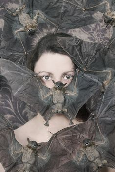 Photo Bomber  FREE SHIPPING  Print. Caryn Drexl Photography. Bats, taxidermy, dead, creepy, surreal, portrait.
