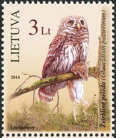Eurasian Pygmy Owl stamps - mainly images - gallery format