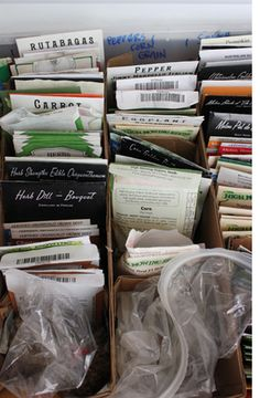 How to store your seeds - a great idea!  We do something pretty similar but with hanging file folders.  I think I might like this system better - more visible...hmm?