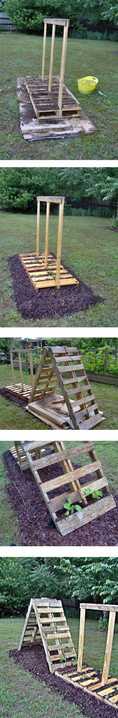 Pallet Garden Project - 3 pallets, some cardboard, some compost and 2 bags of mulch create a garden in about an hour!! Plus it LOOKS REALLY COOL ;) This comes with good instructions. Garden in the pics has been set up for tomatoes, climbing cucumbers and cantaloupe...