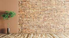 empty bitmoji rug brick fotolia plants plant