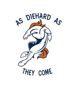 Are you ready for some football? | We love the Denver Broncos | Denver Bronco fans are diehard.