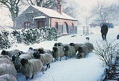 Kirkland, Cumbria