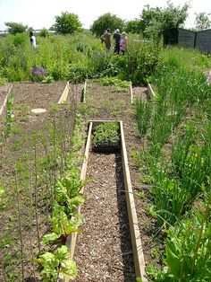 Keyhole Beds by London Permaculture, via Flickr