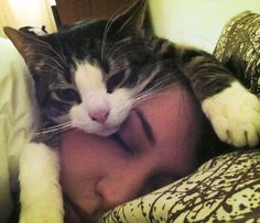 girl as cat pillow..absolutely heart this
