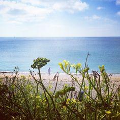 Morning toe-dips at #Gylly #beach, #Falmouth #Cornwall