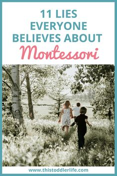 11 LIES EVERYONE BELIEVES ABOUT MONTESSORI - This Toddler Life