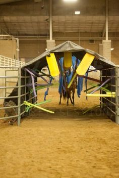 11 Best The Ultimate Cowboy Challenge Course images in 2014