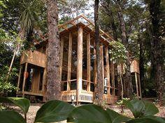Samurai house, Silverstream (Melling Morse Architects)