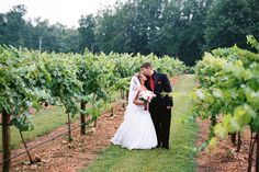 {Wedding Venues   Perks of a Vineyard}    The Pink Bride www.thepinkbride.com    Image courtesy of A.J. Holmes Photography.    #wedding #vineyard #bride #groom #kiss