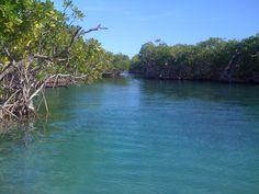 Gilligan Island, Guanica