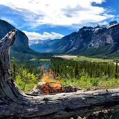 One of my favorite places that I've called home over the past 20 years. This is the area that I developed my passion for primitive skills and did my first solo survival trip. Banff National Park, 20 Years, Primitive, Coaching, Meditation, The Past, Survival, Passion, River