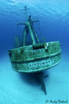 Kittiwake Stern