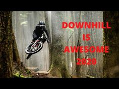 Downhill is Awesome 2020 Pictures Of People, Cool Pictures, Things To Come, Mtb, Awesome, Youtube, Youtubers, Youtube Movies, Mountain Biking