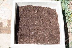 Fill the container most of the way with soil