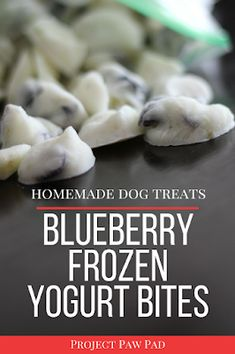 Blueberry Frozen Yogurt Healthy Dog Treat Recipe | Project Paw Pad | diy dog treats, homemade dog treats, weight loss dog treats, dog treat recipes, grain free dog treats, allergy dog treats