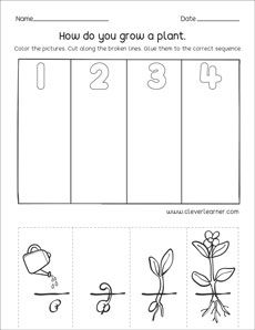Sequence Worksheet For Kindergarten - Which Comes First Second And Third Sequence Activity For Kids Which Comes First Second And Third Sequence Activity For Kids Preschool Sequencing Event. Seeds Preschool, Preschool Garden, Preschool Activities, Sequencing Worksheets, Kindergarten Worksheets, Worksheets For Kids, Plant Lessons, Sequencing Pictures, Grande Section
